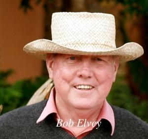 Bob Elvey 2008